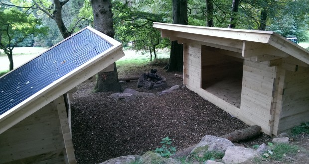 Forest Shelters
