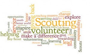 Volunteer Internship programme