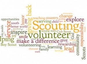 Volunteer Internship programme